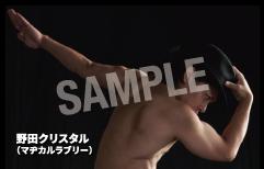 野田クリスタル「あんなに丸い物を見たのは初めてなのさ」無料フル試聴